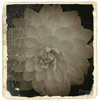 Mixed Media - Vintage Sepia Dahlia 1 by Chalet Roome-Rigdon