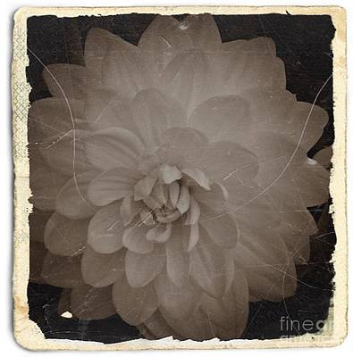 Mixed Media - Vintage Sepia Dahlia 2 by Chalet Roome-Rigdon