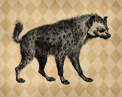 Engraving Digital Art - Spotted Hyena by Flo Karp