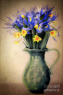 Photograph - Vintage Spring Daffodils And Irises  by Karen Lewis