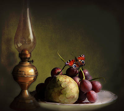 Vintage Still Life Butterfly And Fruits Art Print