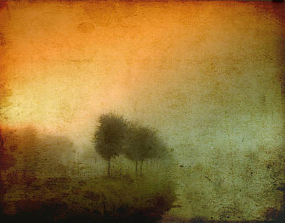 Photograph - Vintage Tree Line by Pete Rems