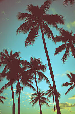 Palm Tree Photograph - Vintage Tropical Palms by Mr Doomits