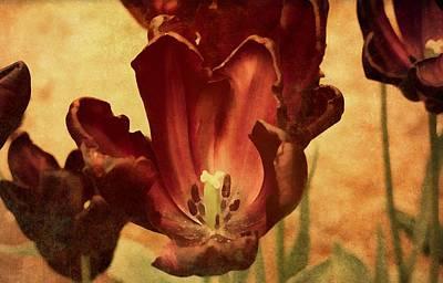 Mixed Media - Vintage Tulips by Georgiana Romanovna