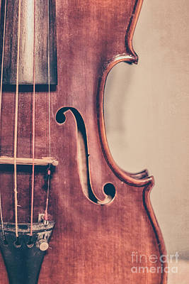 Violin Photograph - Vintage Violin Portrait 2 by Emily Kay
