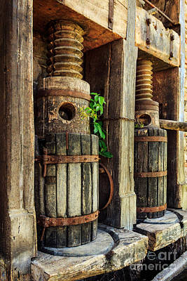 Photograph - Vintage Wine Press by James Eddy