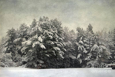 Photograph - Vintage Winter by Karin Pinkham