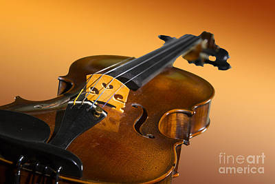 Photograph - Viola Violin On A Gold Background In Color 3068.02 by M K Miller