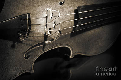 Band Photograph - Viola Violin On Tabletop String Bridge In Sepia 3077.01 by M K  Miller