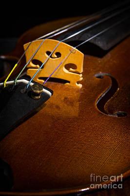 Photograph - Viola Violin String Bridge Close In Color 3075.02 by M K Miller