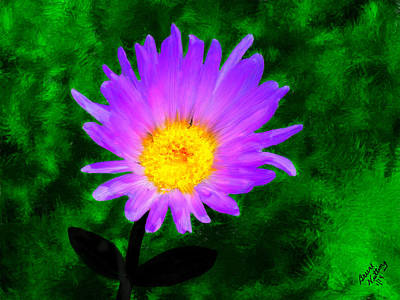 Flower Painting - Violet Mojave  Aster by Bruce Nutting