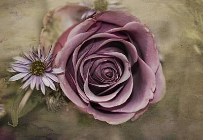 Photograph - Violet Rose  by Patricia Dennis