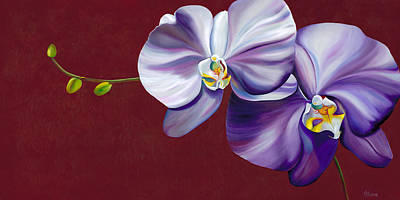 Orchid Art Painting - Violet Shadows by Kerri Meehan