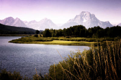 Photograph - Violet Tetons by Ron White