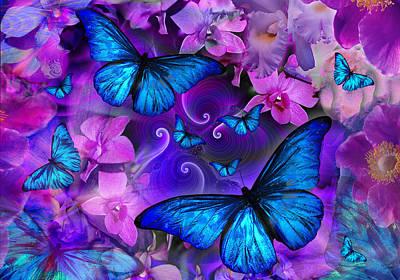 Alixandra Mullins Photograph - Violetmorpheus Version 2 by Alixandra Mullins