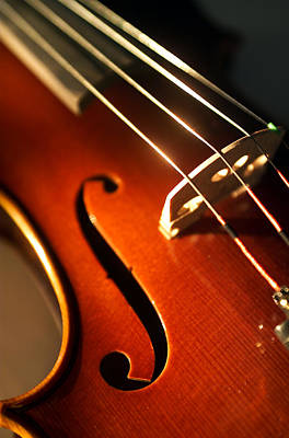 Violin Photograph - Violin Iv by Jon Neidert