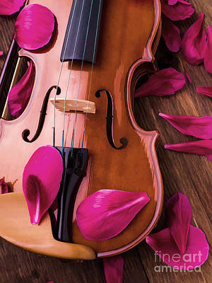 Fiddle Photograph - Violin And Flower Petals by Edward Fielding