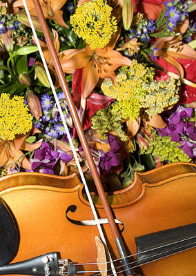 Violin Digital Art - Violin And Flowers by Jodi Jacobson