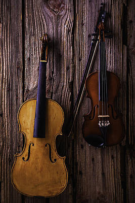Beaten Up Photograph - Violin And Viola by Garry Gay