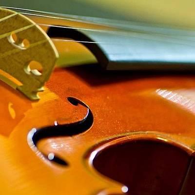 Music Photograph - #violin #music by Sara Dlg