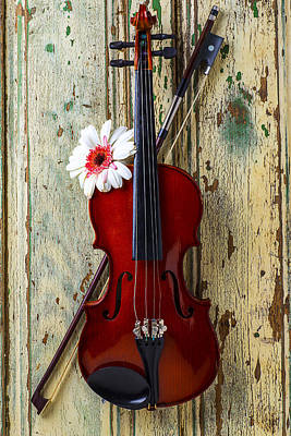 Gerbera Daisy Photograph - Violin On Old Door by Garry Gay