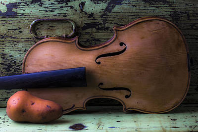 Beaten Up Photograph - Violin Pear Study by Garry Gay