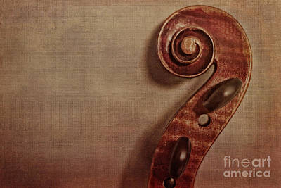 Violins Photograph - Violin Scroll by Emily Kay