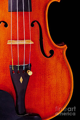 Photograph - Violin Viola Body Photograph Or Picture In Color 3265.02 by M K Miller