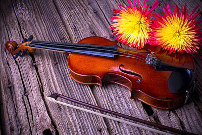 Beaten Up Photograph - Violin With Spider Mums by Garry Gay