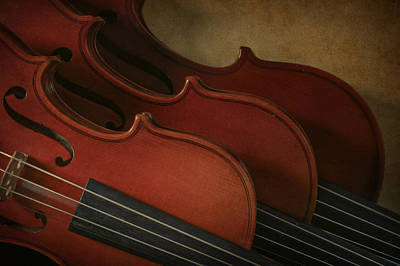 Photograph - Violins by David and Carol Kelly