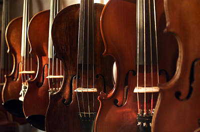 Violin Photograph - Violins Horizontal by Jon Neidert