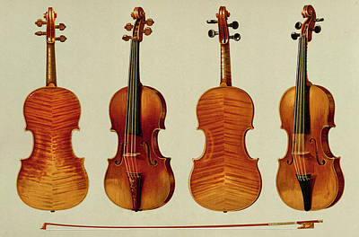 Bow Drawing - Violins by Alfred James Hipkins