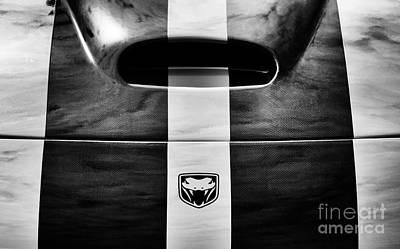 Car Emblem Photograph - Viper by Tim Gainey