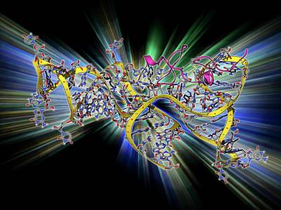 Viral Rna Packaging Signal Complex Art Print