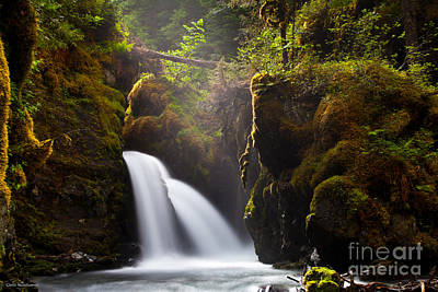 Virgin Creek Falls Art Print by Chris Heitstuman