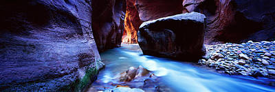 Park Scene Photograph - Virgin River At Zion National Park by Panoramic Images