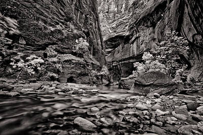 Virgin River Calm Art Print by Juan Carlos Diaz Parra