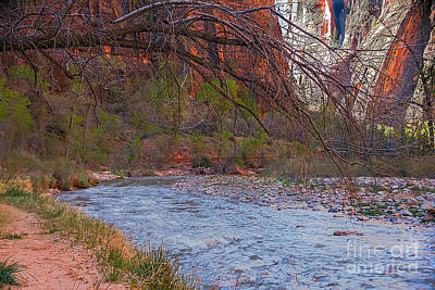 Photograph - Virgin River In Zion by Robert Bales