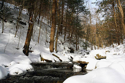 Photograph - Virgin Snow Along Kitchen Creek by Gene Walls