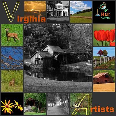 Bale Mixed Media - Virginia Artist  by Eric Liller