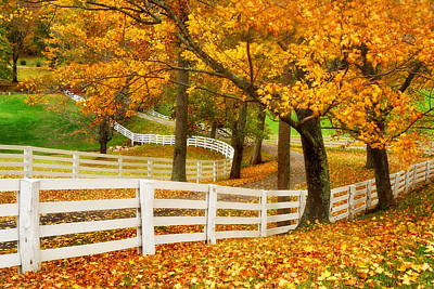 Photograph - Virginia Horse Country by Carolyn Derstine