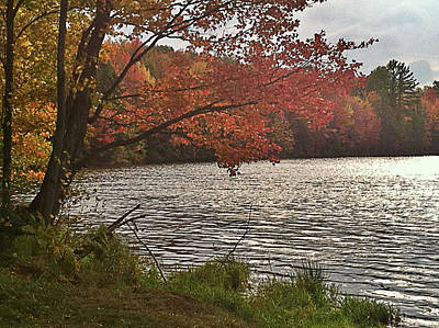 Virginia Landscape Art Art Print