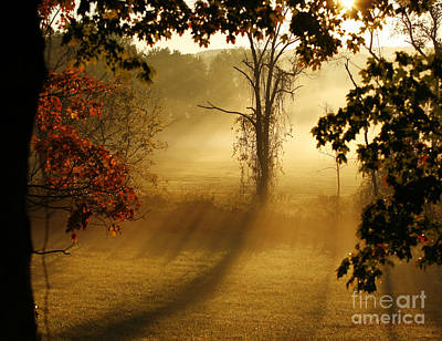 Virginia Sunrise Art Print by Carol Lynn Coronios