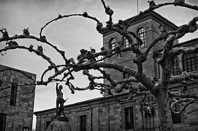 Photograph - Viriato by Pablo Lopez