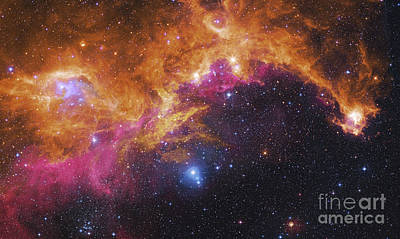 Ic 2177 Photograph - Visible Light-infrared Composite Of Ic by Robert Gendler