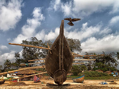 Kerala Photograph - Visitor by Stelios Kleanthous