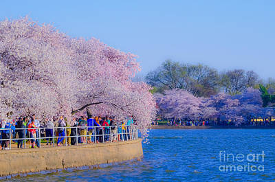 Photograph - Visitors To The Blooms On The Basin by Jeff at JSJ Photography