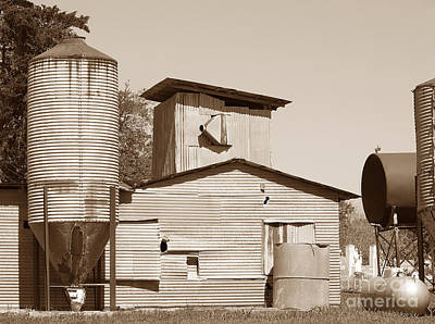 Photograph - Visual Geometry - Old Texas Farm In Sepia  by Connie Fox