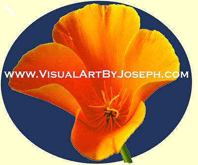 Digital Art - Visualartbyjosephlogo by Joseph Coulombe