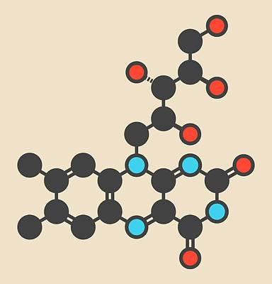 Vitamin B2 Molecule Art Print by Molekuul